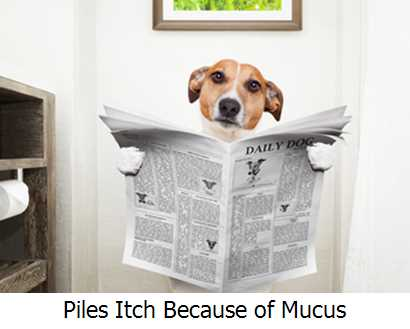 Piles Itch Because of Mucus